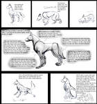 How To Draw Real Feral Wolves