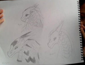 Wings of Fire Hybrid Adoptables (Aqua open)