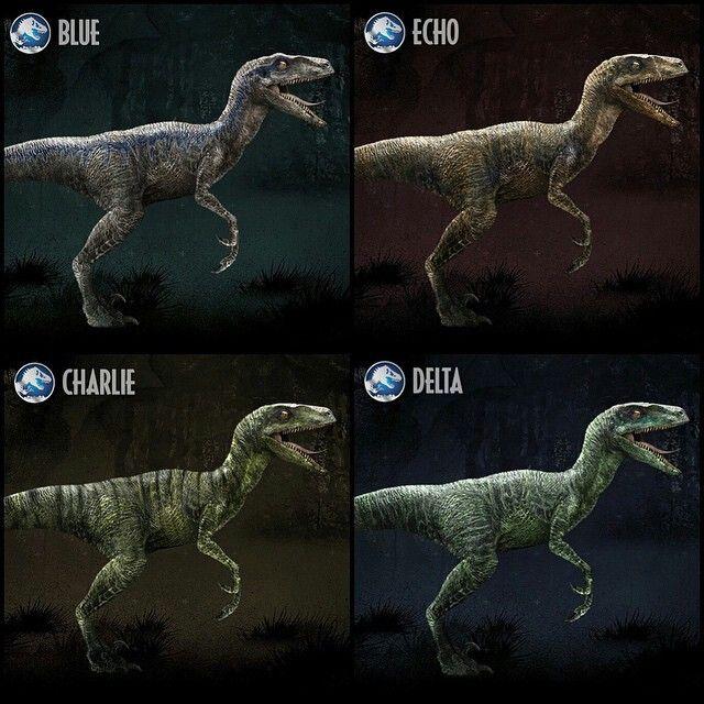 Jurassic World Raptor Differences By WinterStormWolf96