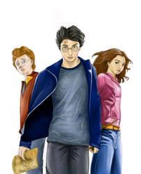 Harry Potter Trio by Dizziowl