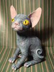 Cat blue by Santani