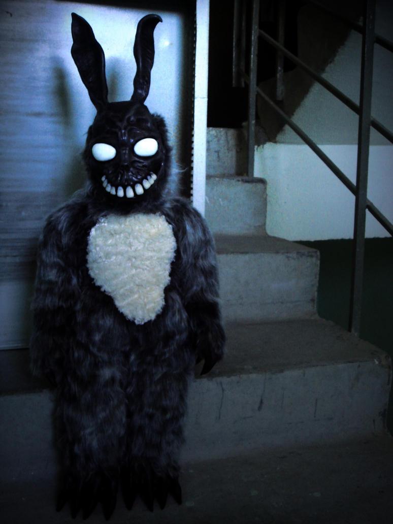 Frank the bunny by Santani