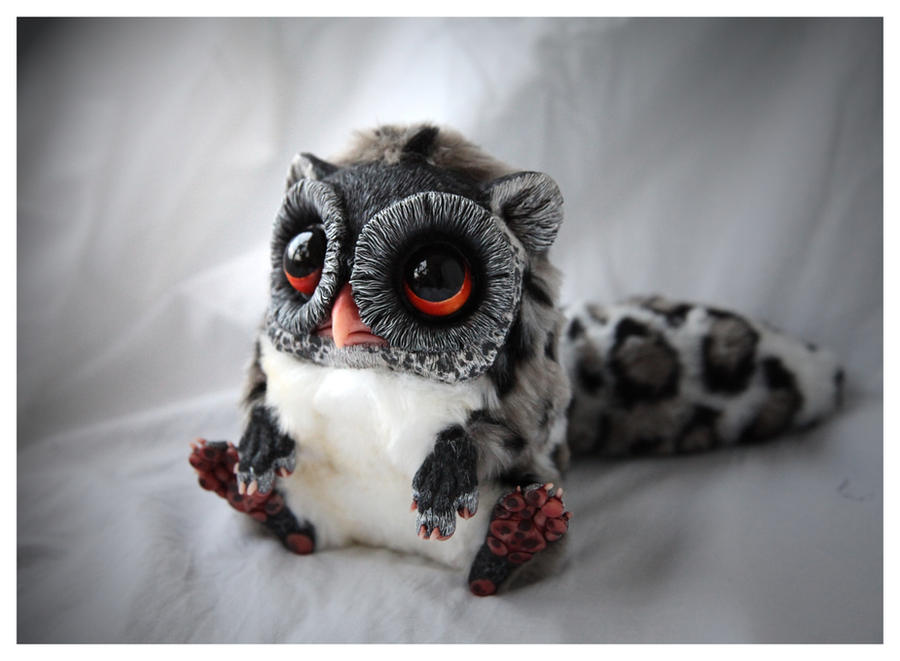 Tiny Griffin Spotty by Santani
