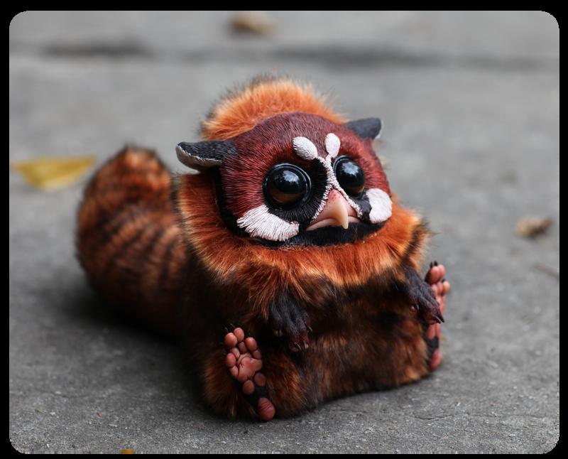 T.G. Red panda