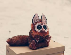 T.G. Squirrel