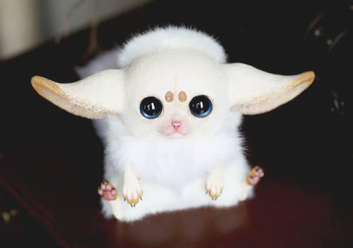 Inari Foxes: Nude