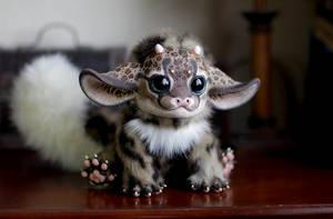My Little Dragon: Leopard