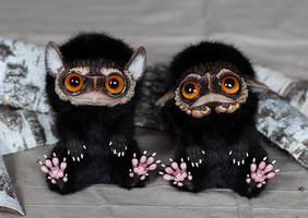 Whippoorwill Sad and Whippoorwill Happy by Santani