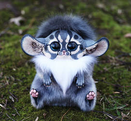 Inari Fox: Gray shaman