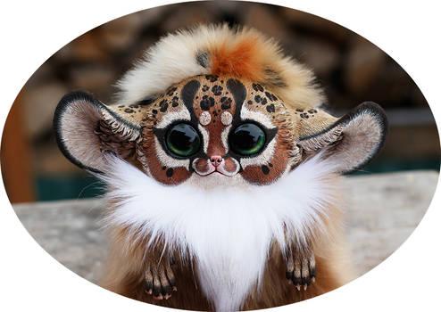 Inari Fox: Cheetah 2