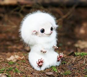 Hedgehog: White 2