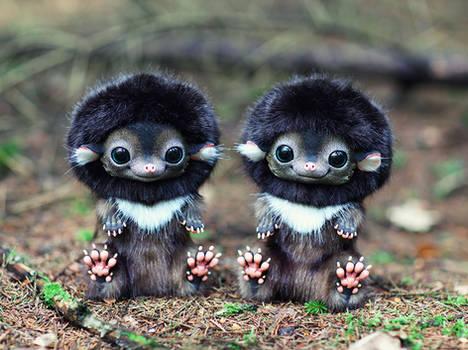 Hedgehog: Brown