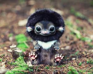 Hedgehog: Brown 2
