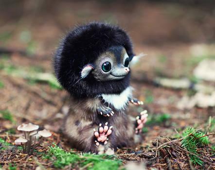 Hedgehog: Brown 3