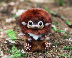 Hedgehog: Ginger