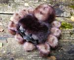 Friendly little spider: Brown 1