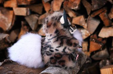 Oni Fox: Tiger (side view)