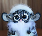 Inari Fox: New Snow Leopard with a mane 3