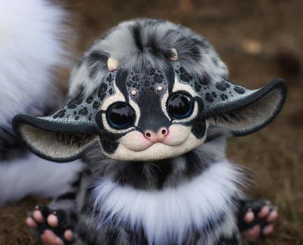 My Little Dragon: New Snow leopard 3