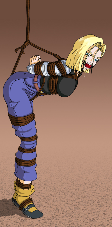 Android 18 trade by Wing-Saber