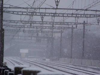sous la neige by joho972