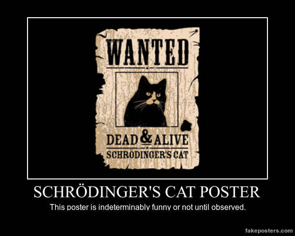 Schrodinger's Cat by Evilkitten3