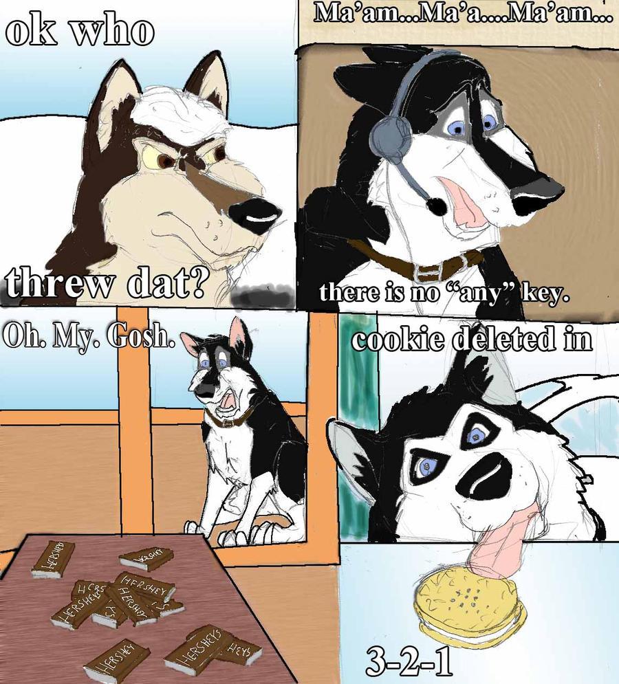 Funny Dogs by ShadowDHusky