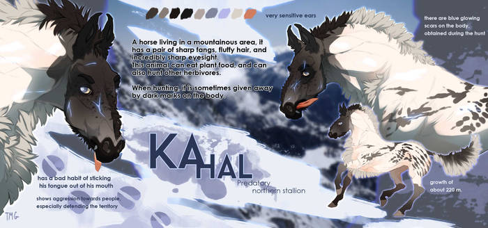 KAHAL | ADOPT | AUCTION | CLOSED