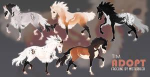 ADOPT | HORSE | AUCTION | CLOSED