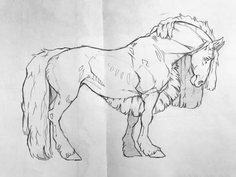 horses cketch