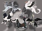 ADOPT | BIRDS | AUCTION | CLOSED