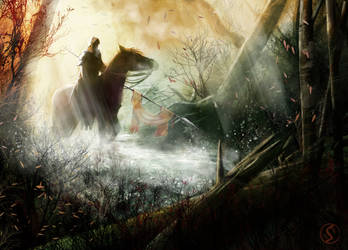 Forest horseman by WackoShirow