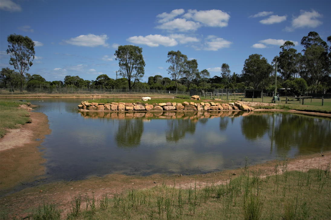 Hunter Valley  Zoo Lake by evilpaw24614