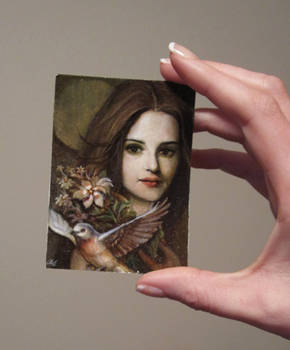 'Dusk: ACEO Card size ref