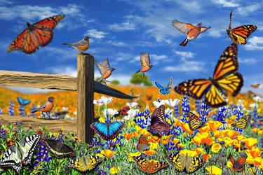 Arabella's Robins in the Butterfly Field