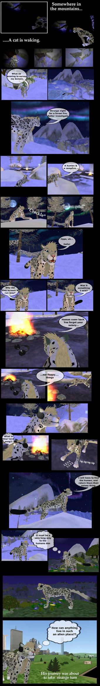 Beepaw the snowcat Comic page 1