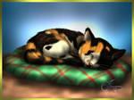 Little Sleepy Kitten
