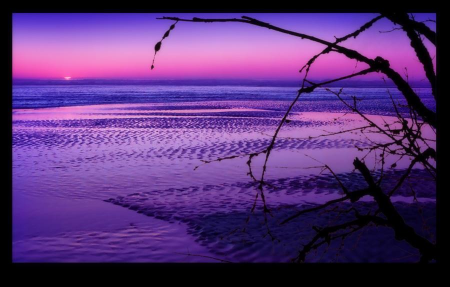 Twilight Ocean by bypolar-bear