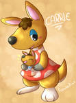 Kangaroo mom Carrie