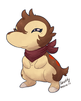 Peanut the Cyndaquil