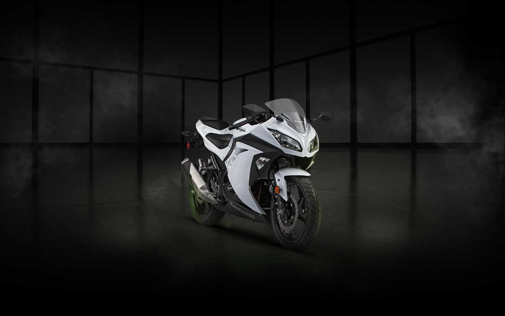 Kawasaki Ninja White Colour