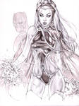Storm and Black Panther in Pencil by me eBas