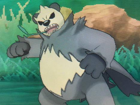 Rogue Panda