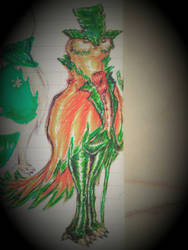 Bush Owl Traditional by nymzok
