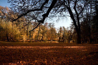 Autumn in Maksimir park II by hrvojemihajlic