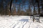 Winter in Maksimir Park XIII