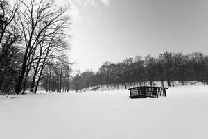 Winter in Maksimir Park XVI by hrvojemihajlic
