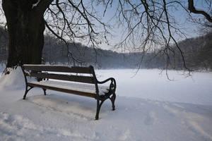 Winter in Maksimir Park XVIII by hrvojemihajlic