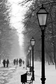 Winter in Maksimir Park XX