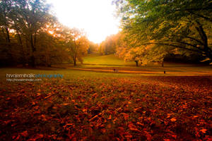 Autumn in Maksimir Park 09 I